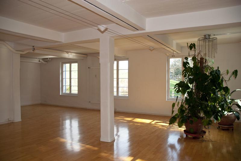 loft fenster wiese2. Black Bedroom Furniture Sets. Home Design Ideas